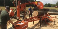 Cutting reclaimed timber to shape on Horsell Common